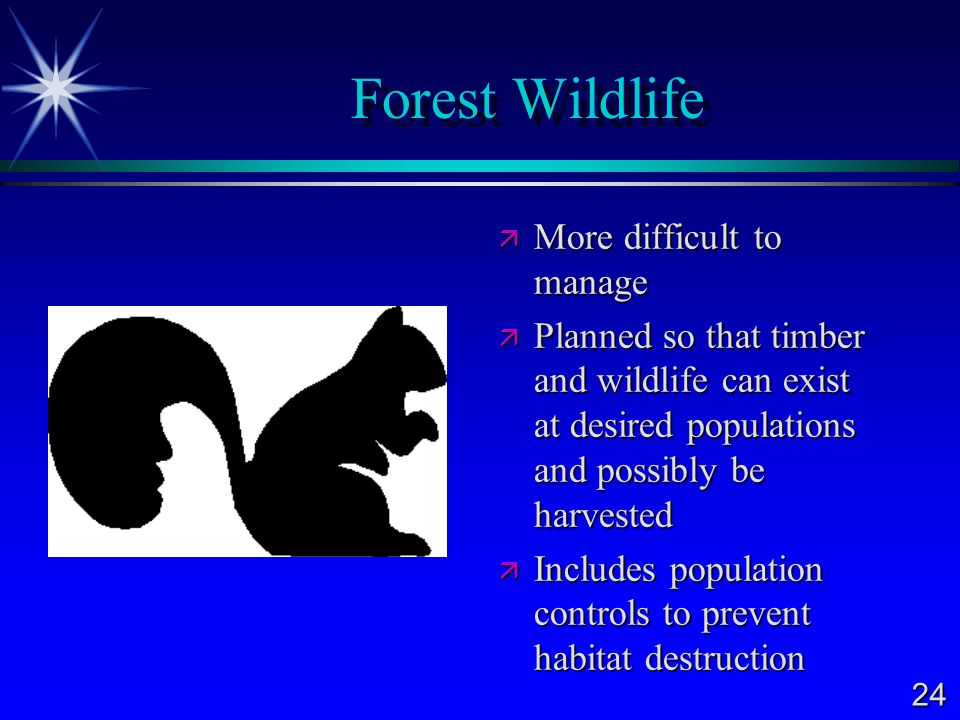 Forest Wildlife More difficult to manage