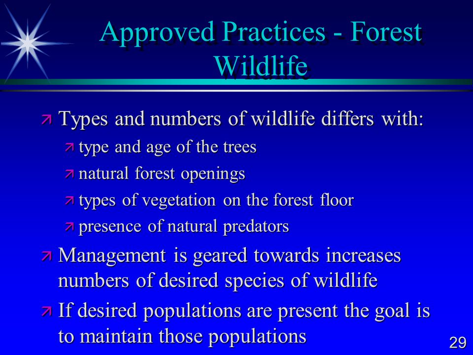 Approved Practices - Forest Wildlife