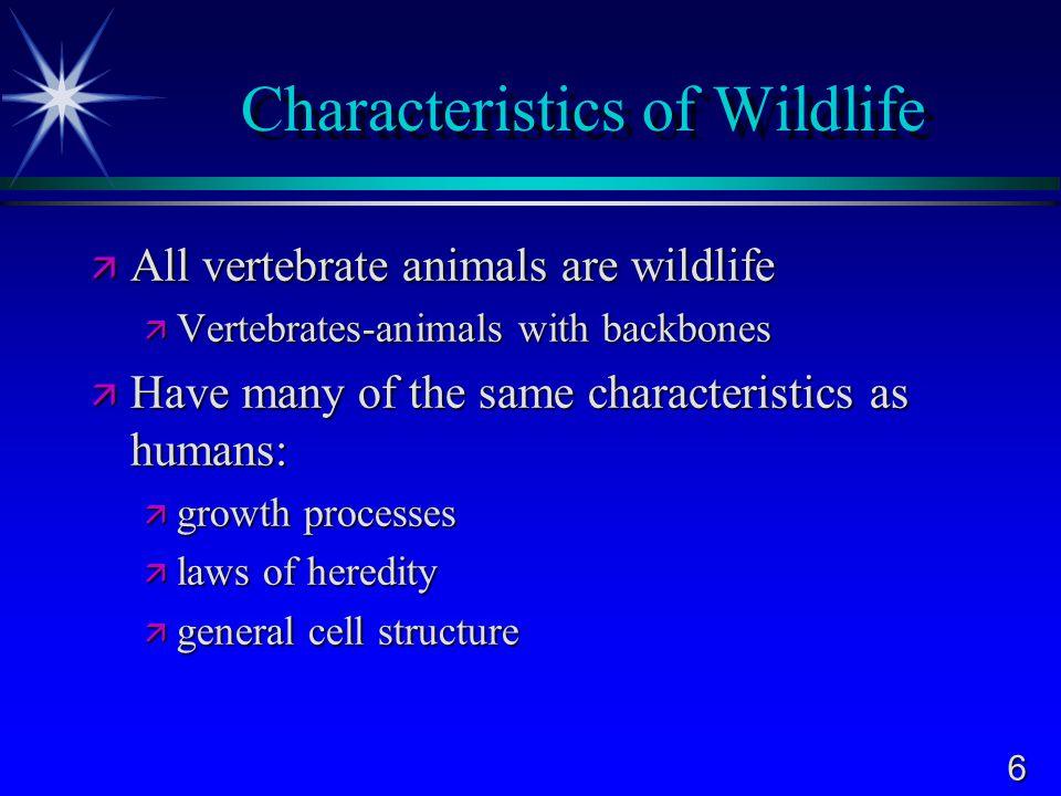 Characteristics of Wildlife
