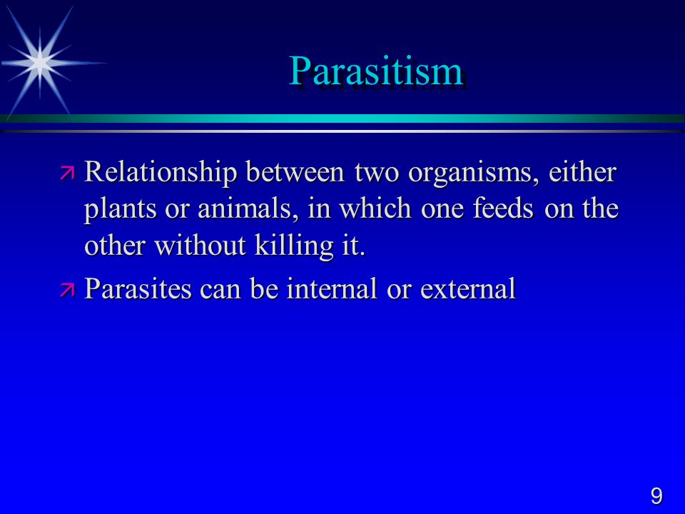 Parasitism Relationship between two organisms, either plants or animals, in which one feeds on the other without killing it.
