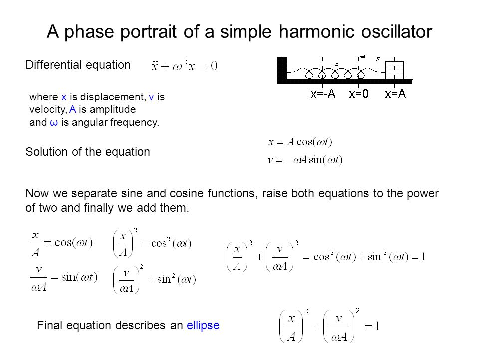 A phase portrait of a simple harmonic oscillator