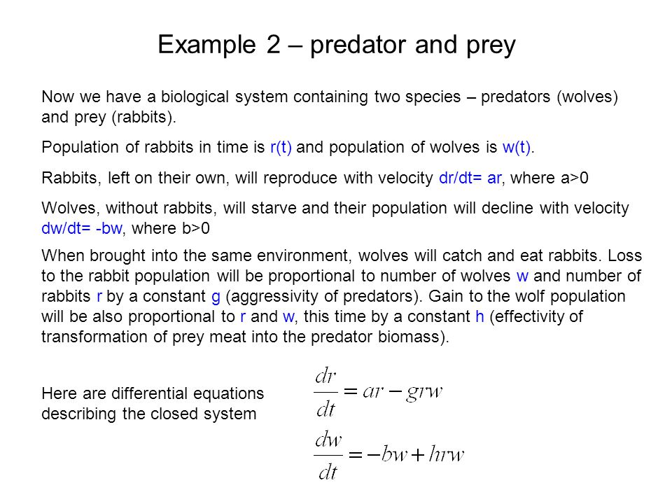 Example 2 – predator and prey