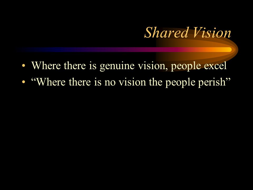 Shared Vision Where there is genuine vision, people excel