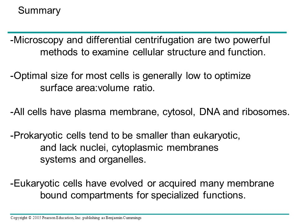 Summary -Microscopy and differential centrifugation are two powerful. methods to examine cellular structure and function.