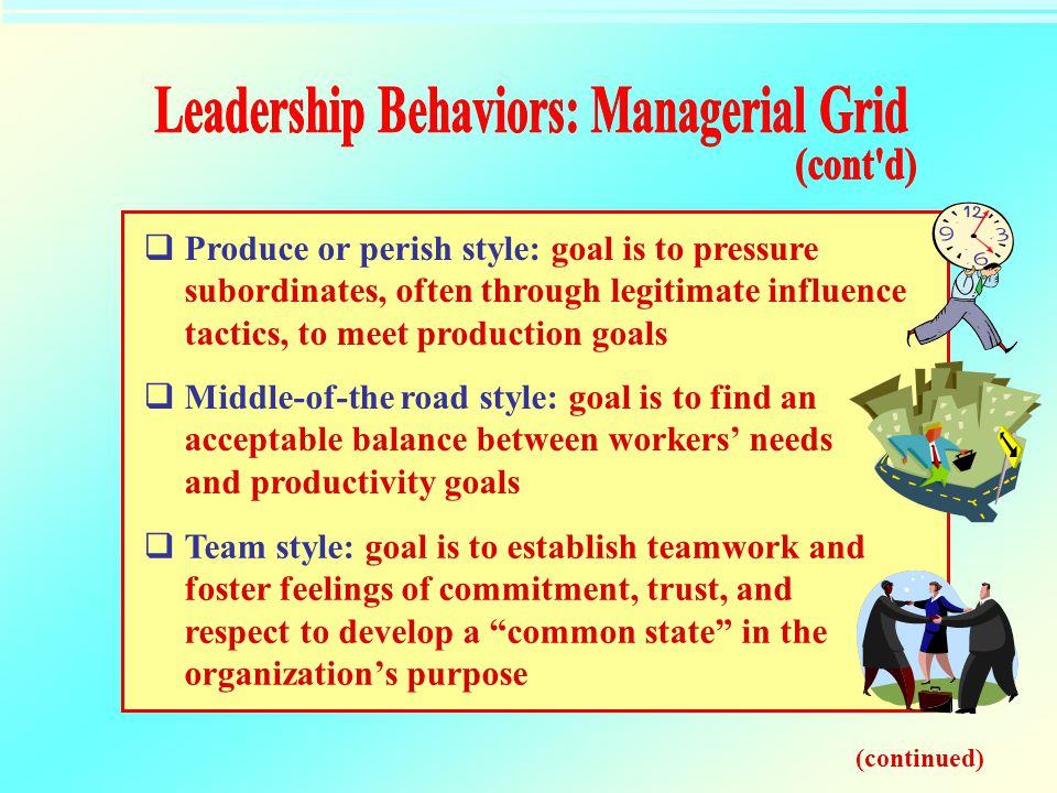 Leadership Behaviors: Managerial Grid
