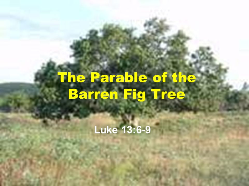 The Parable of the Barren Fig Tree
