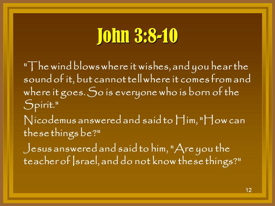 John 3:8-10