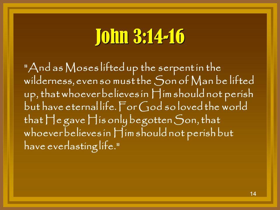 John 3:14-16