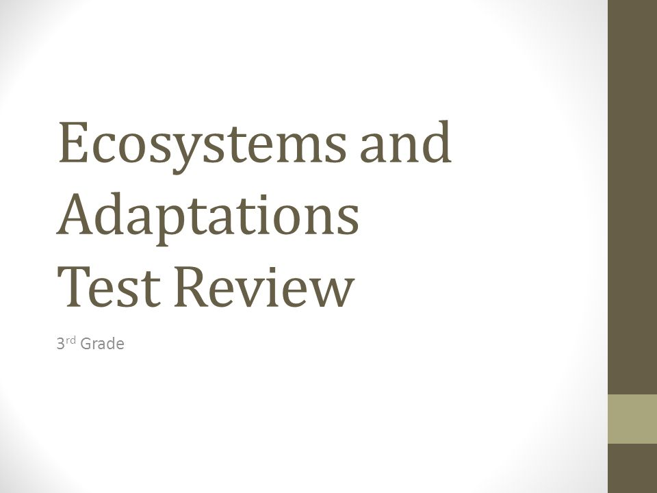 Ecosystems and Adaptations Test Review