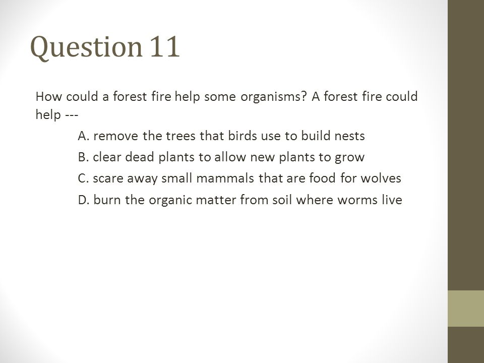 Question 11 How could a forest fire help some organisms A forest fire could help --- A. remove the trees that birds use to build nests.