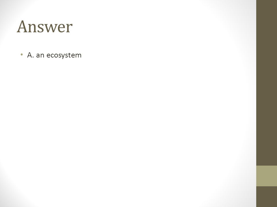 Answer A. an ecosystem