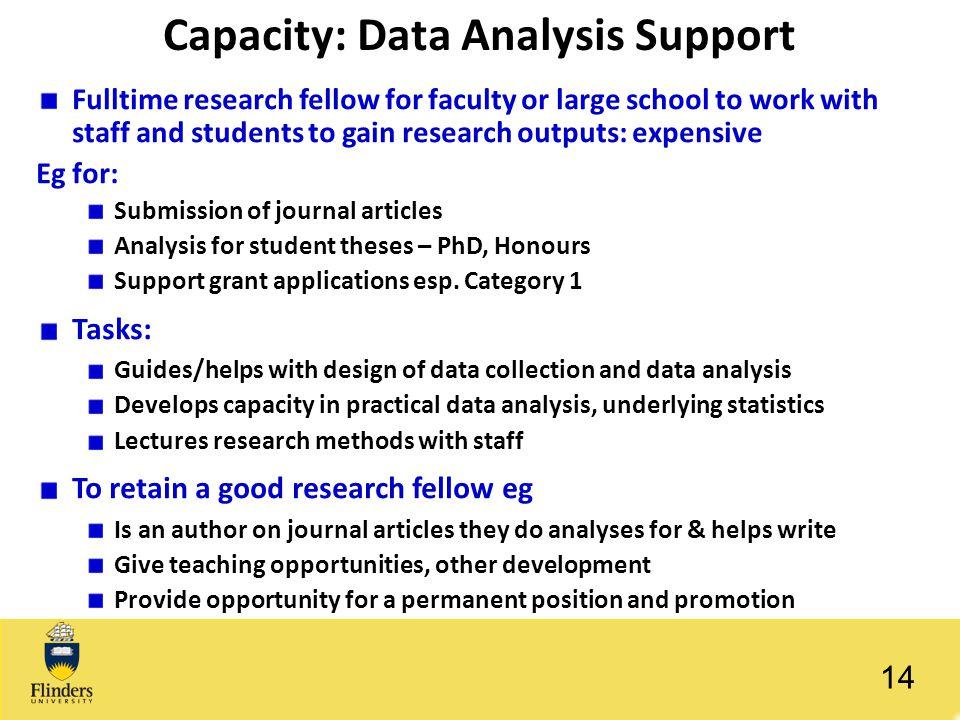Capacity: Data Analysis Support