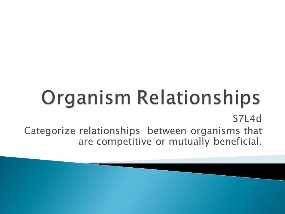 Organism Relationships