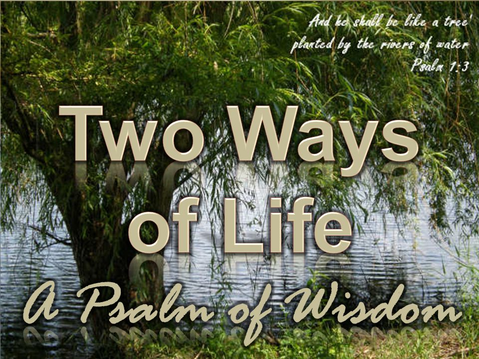 Two Ways of Life A Psalm of Wisdom