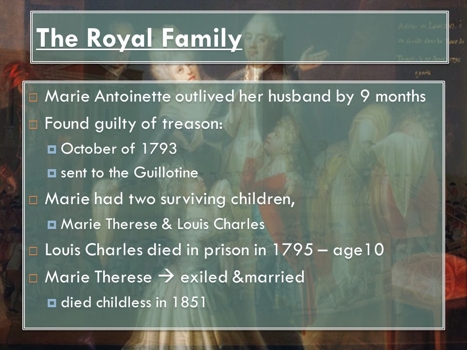 The Royal Family Marie Antoinette outlived her husband by 9 months