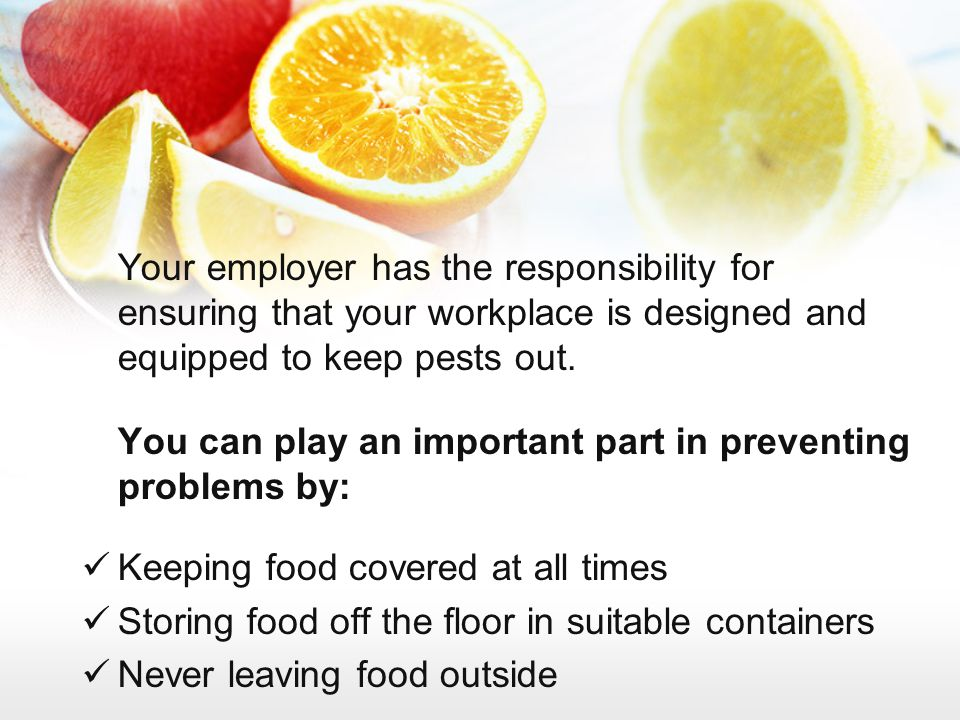 Your employer has the responsibility for ensuring that your workplace is designed and equipped to keep pests out.