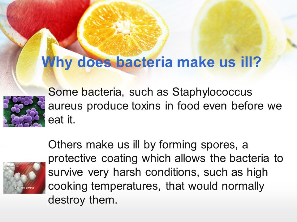 Why does bacteria make us ill