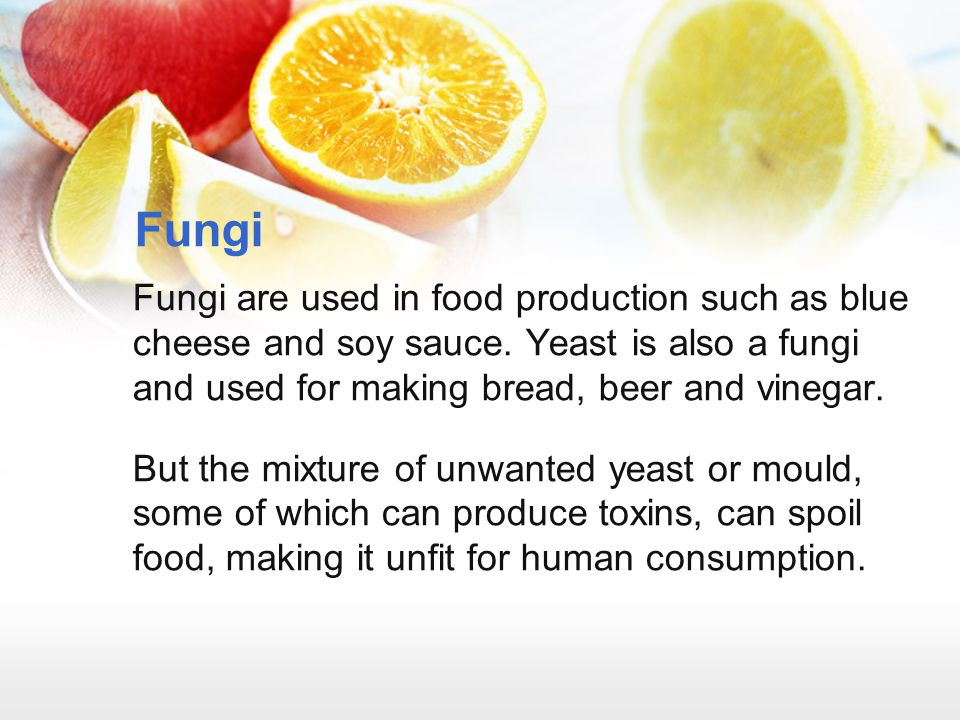 Fungi Fungi are used in food production such as blue cheese and soy sauce. Yeast is also a fungi and used for making bread, beer and vinegar.