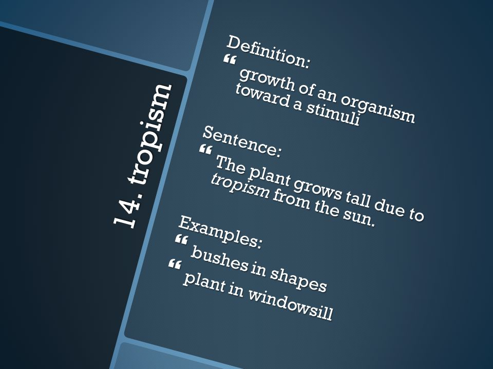 14. tropism Definition: growth of an organism toward a stimuli