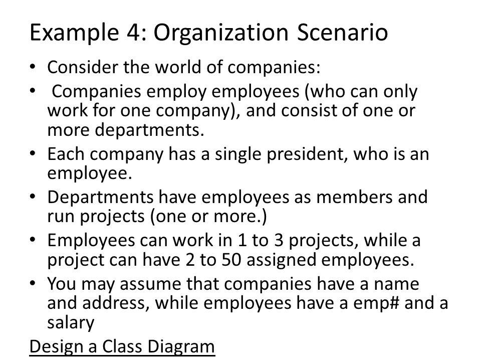 Example 4: Organization Scenario