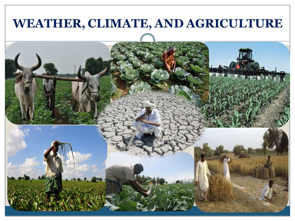 WEATHER, CLIMATE, AND AGRICULTURE
