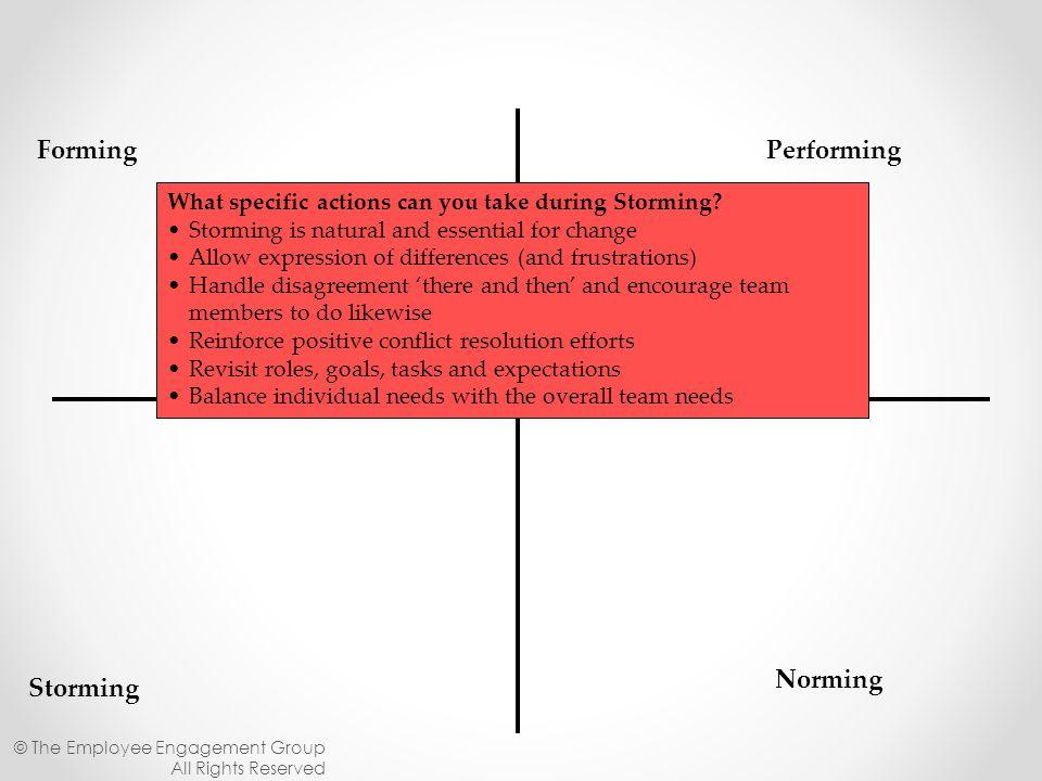 Forming Performing Norming Storming