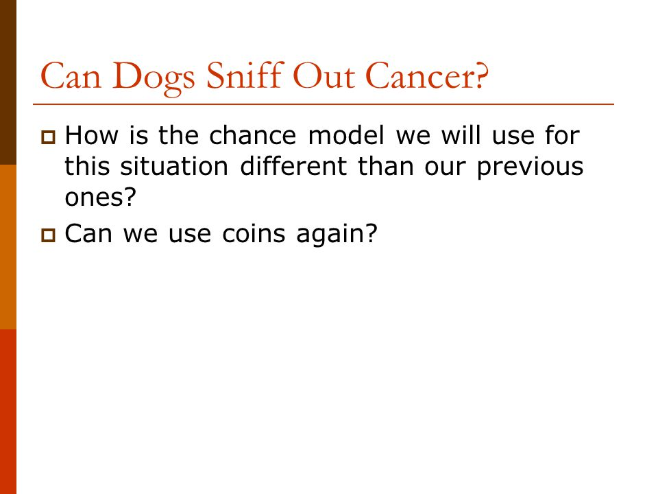 Can Dogs Sniff Out Cancer