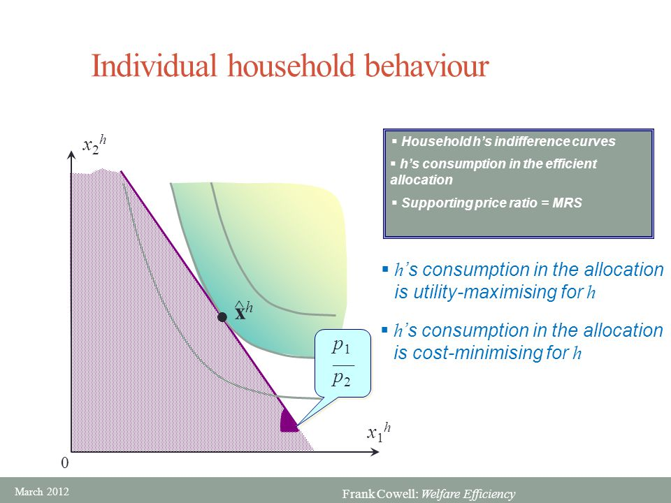 Individual household behaviour