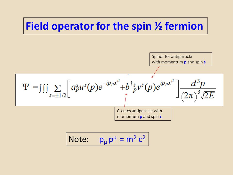 Field operator for the spin ½ fermion