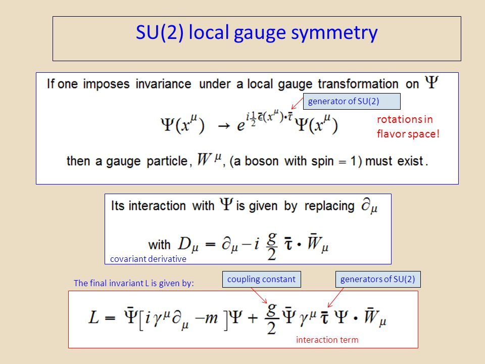 SU(2) local gauge symmetry