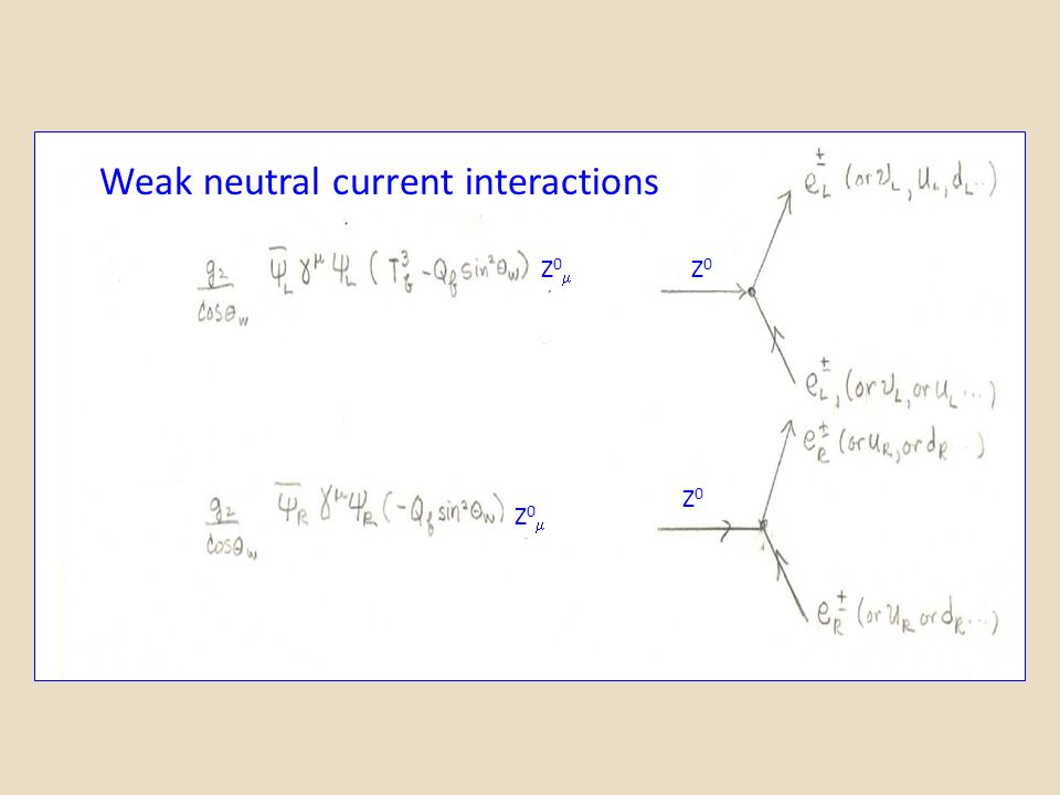 Weak neutral current interactions