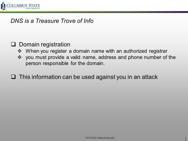 DNS is a Treasure Trove of Info
