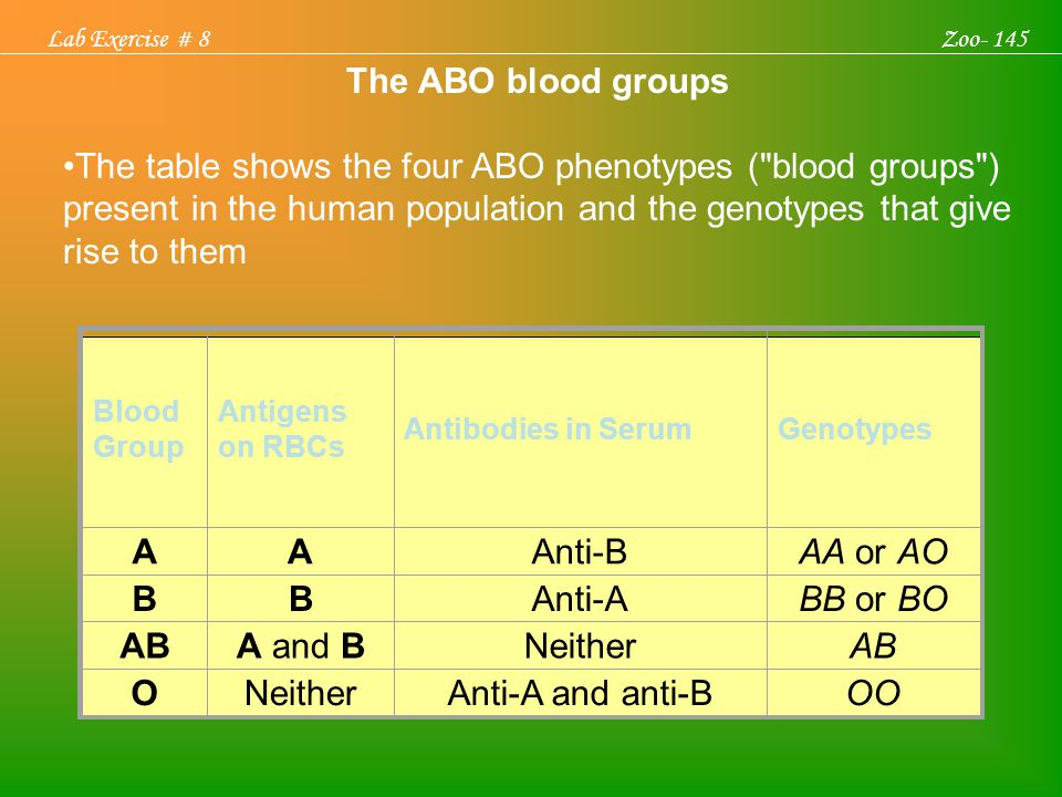 Lab Exercise # 8 Zoo- 145. The ABO blood groups.