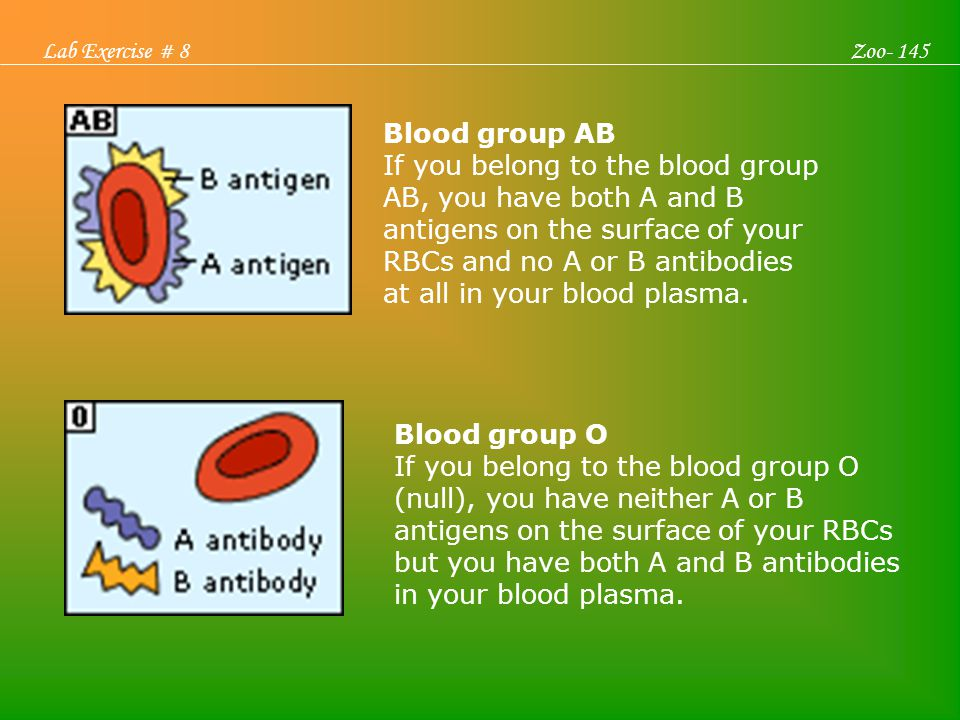 Blood Groups, Blood Typing and Blood Transfusions Blood group AB