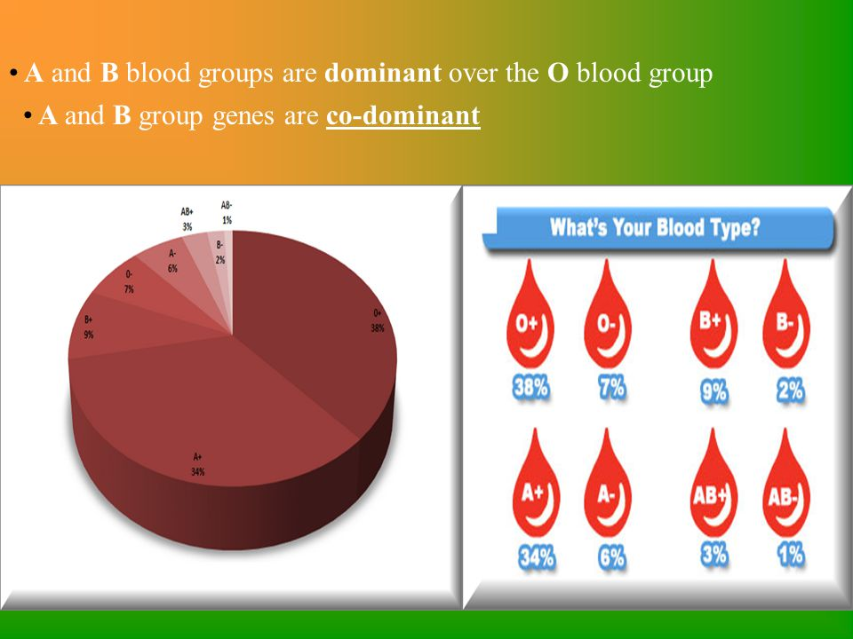 A and B blood groups are dominant over the O blood group