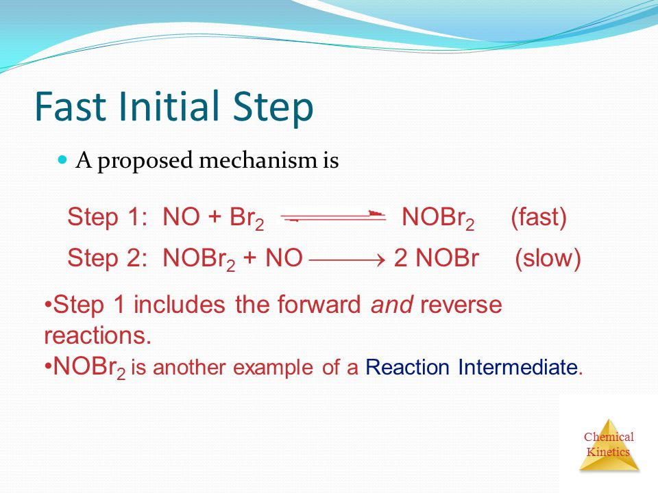 Fast Initial Step Step 1: NO + Br2 NOBr2 (fast)