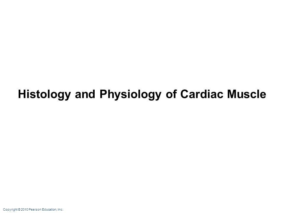 Histology and Physiology of Cardiac Muscle
