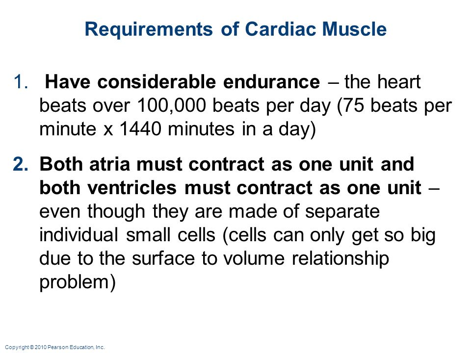 Requirements of Cardiac Muscle