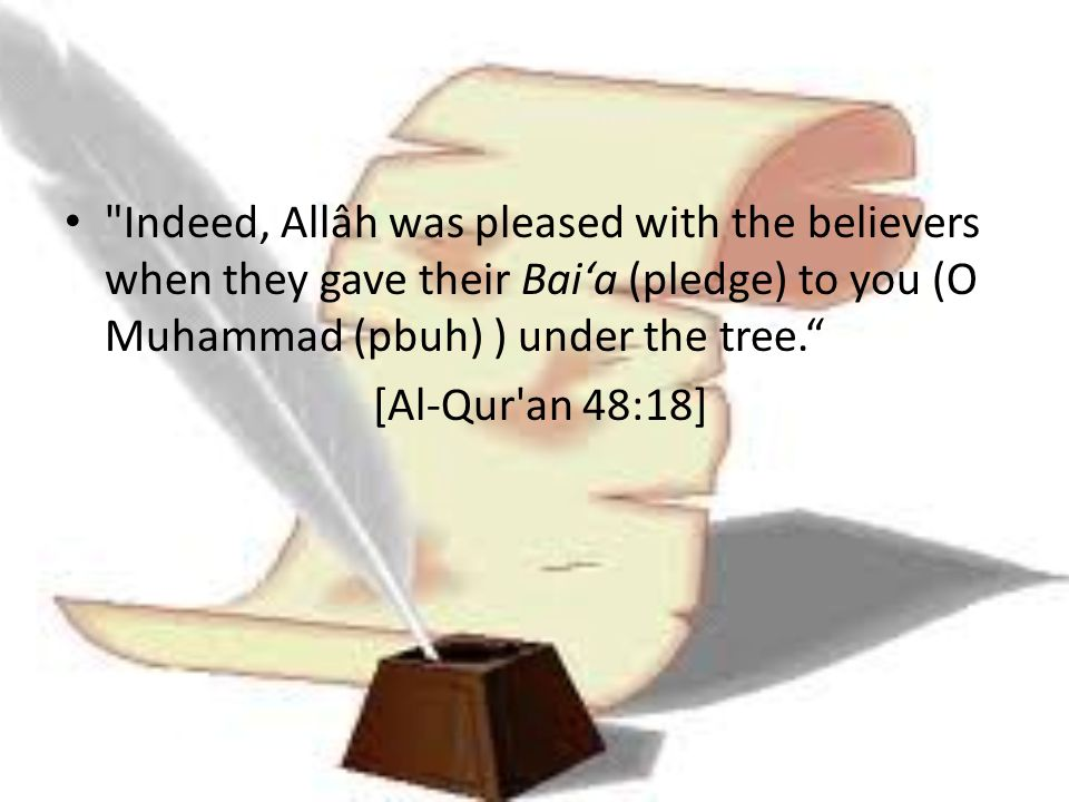 Indeed, Allâh was pleased with the believers when they gave their Bai'a (pledge) to you (O Muhammad (pbuh) ) under the tree.