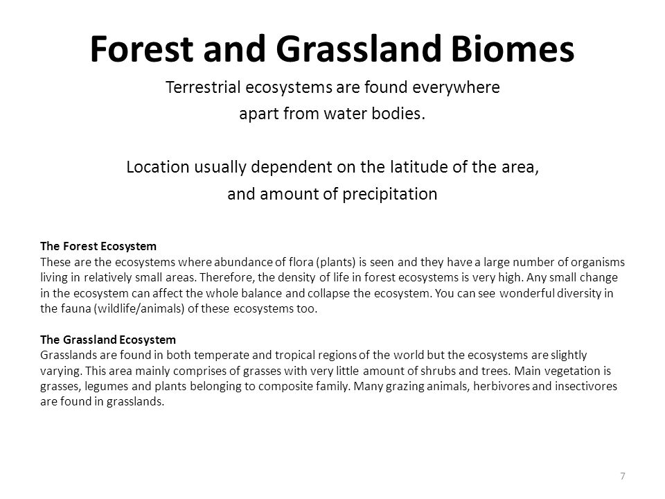 Forest and Grassland Biomes