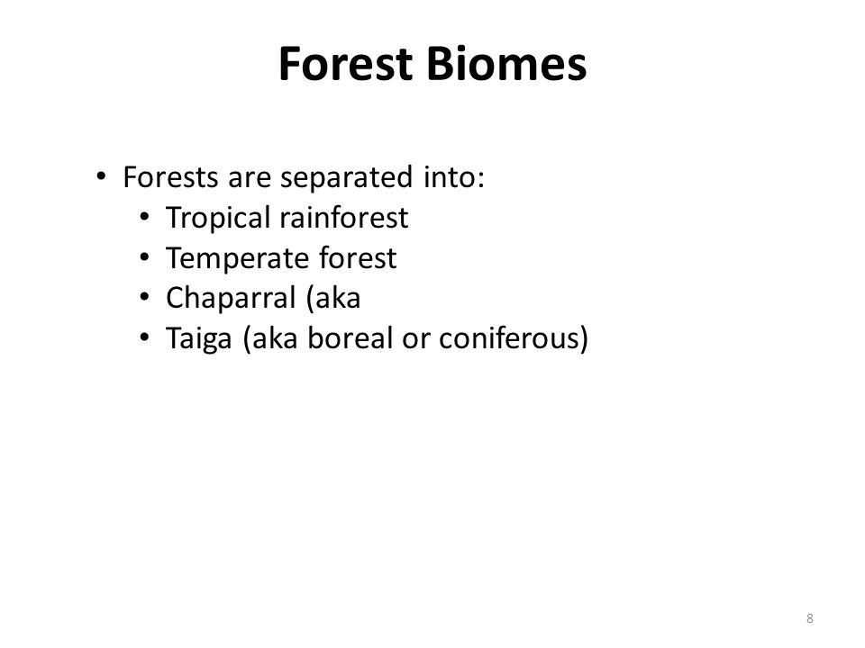 Forest Biomes Forests are separated into: Tropical rainforest
