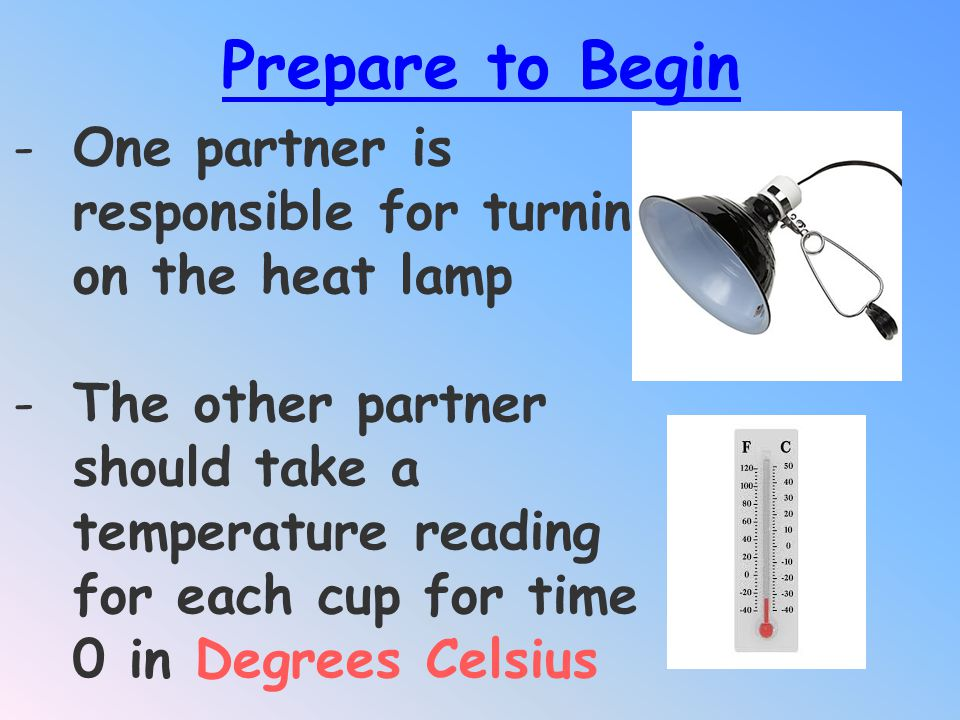 Prepare to Begin One partner is responsible for turning on the heat lamp.