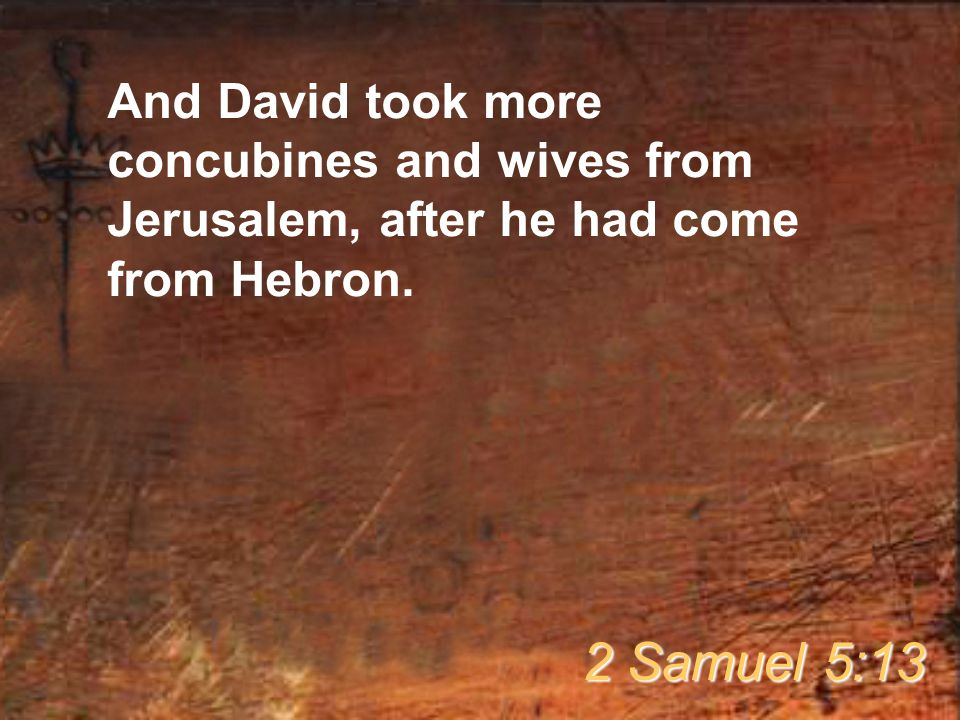 And David took more concubines and wives from Jerusalem, after he had come from Hebron.