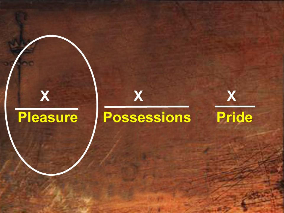 X X X Pleasure Possessions Pride