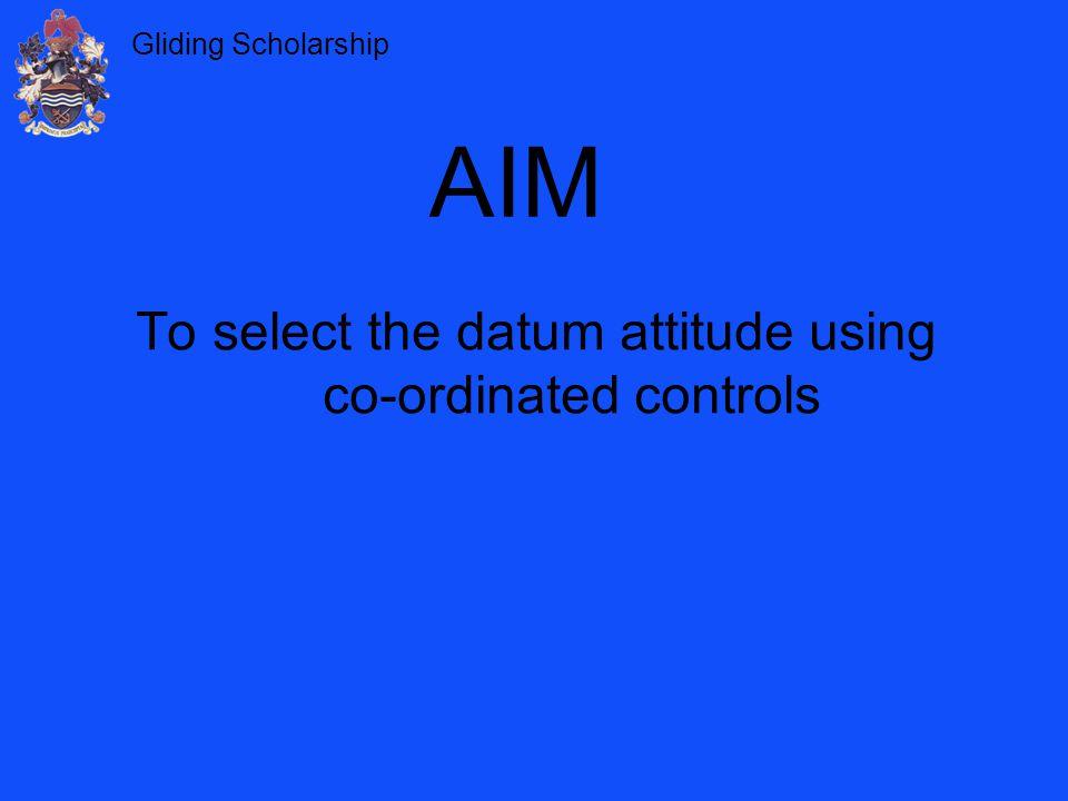 To select the datum attitude using co-ordinated controls