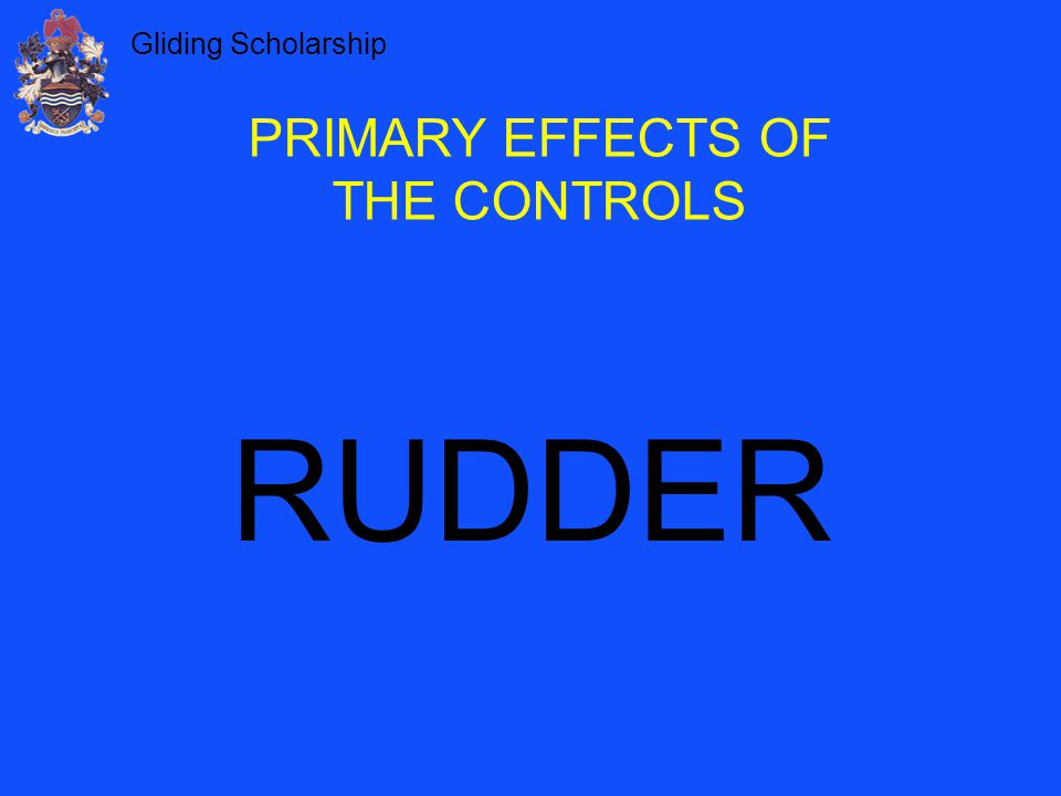 PRIMARY EFFECTS OF THE CONTROLS