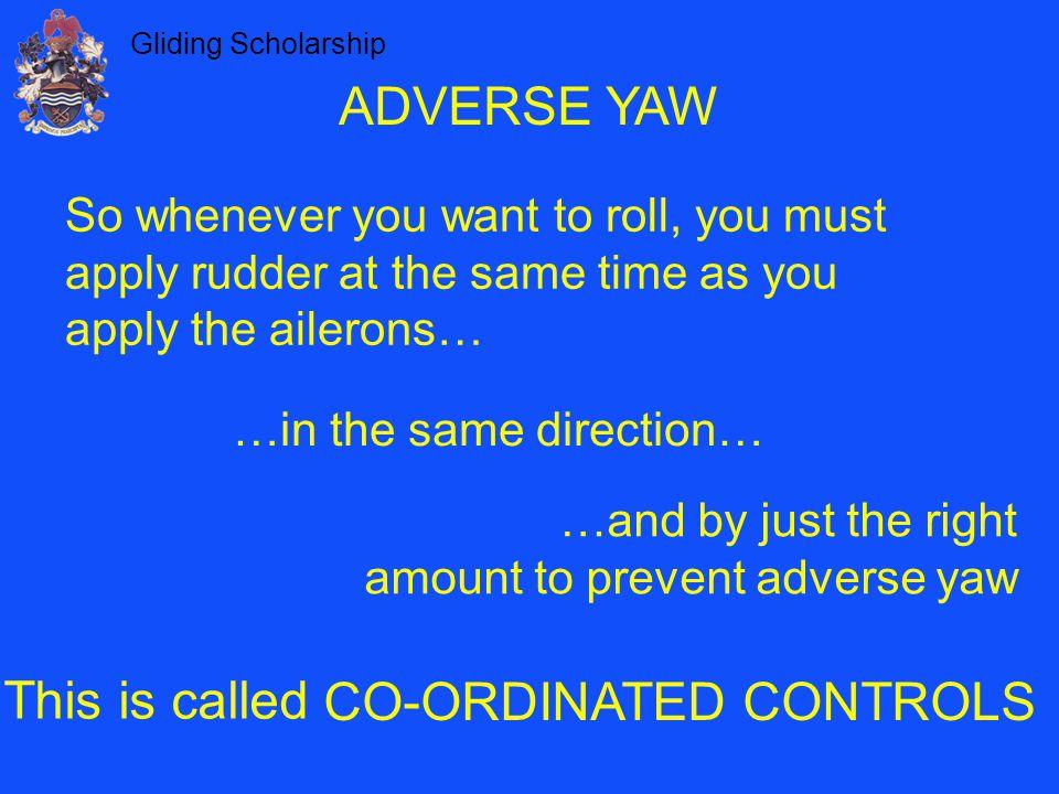 CO-ORDINATED CONTROLS