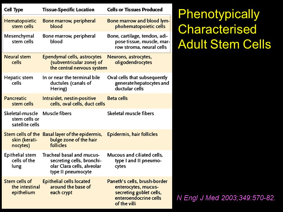 Phenotypically Characterised Adult Stem Cells