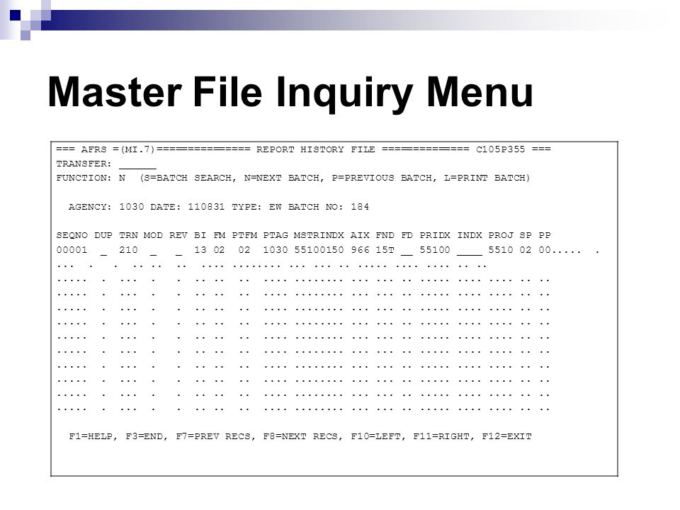 Master File Inquiry Menu