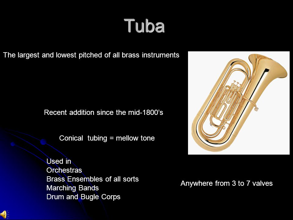 Tuba The largest and lowest pitched of all brass instruments